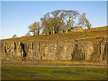 NY9539 : Harrowbank Quarry (disused) below High Farm (3) by Mike Quinn