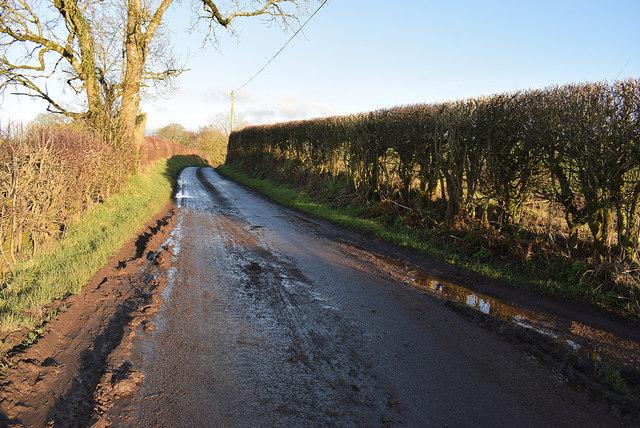 Muddy along Dryarch Road, Donaghanie