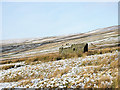 NY9040 : Ruin on thinly snowed moorland by Trevor Littlewood