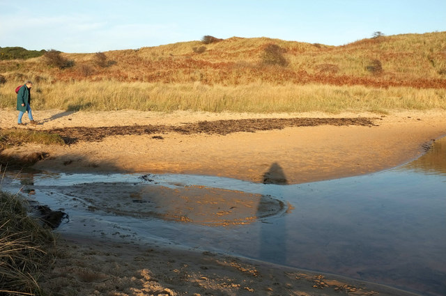 Shadows by the Embleton Burn