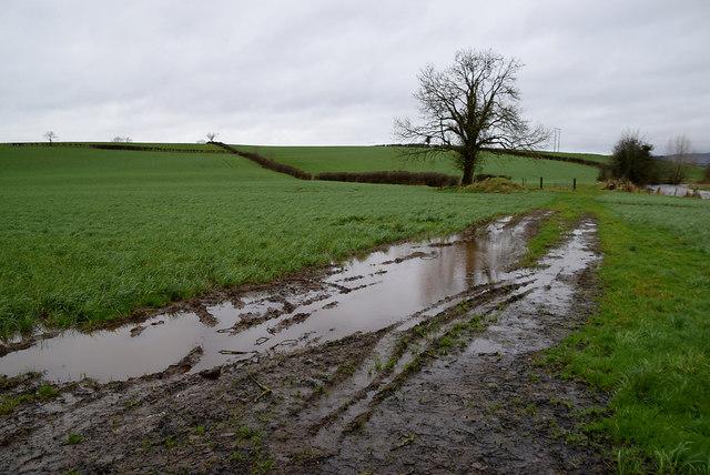 Muddy tracks, Aghagallon