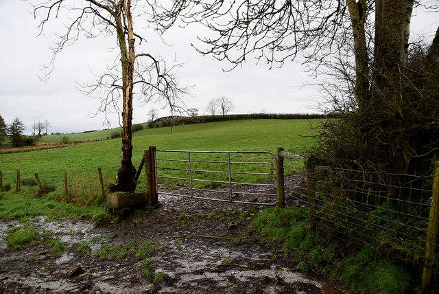 Muddy between fields, Aghagallon