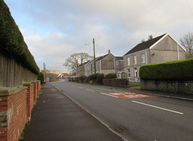Hedges and houses, Dulais Road, Seven Sisters