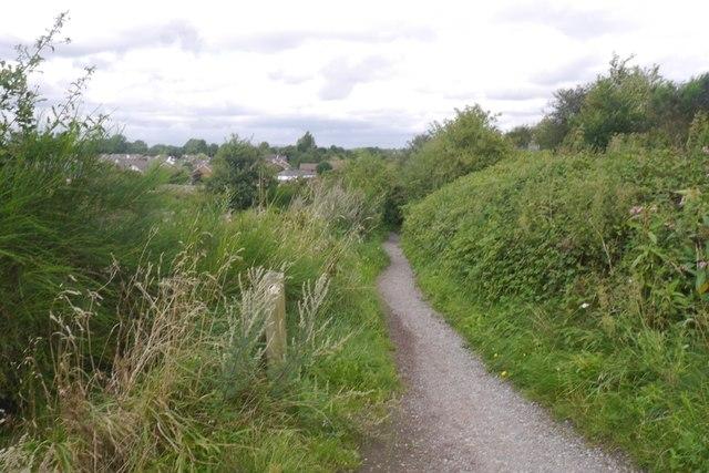 Path, Thelwall Eye