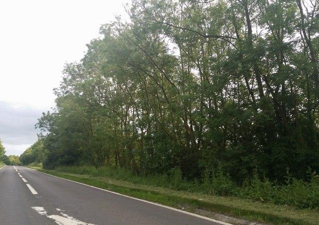 Harborough Road, Little Oxendon