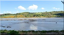 J1022 : Mud flats in the Newry River by Eric Jones