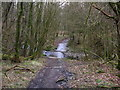 SD6445 : Approaching the ford at Greystoneley by John H Darch