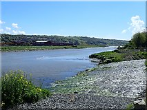 J0923 : View South across the Newry Canal overspill  by Eric Jones