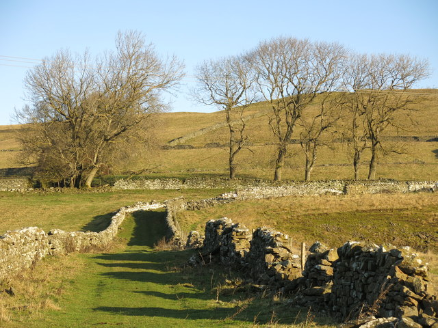 Grassed lane near High Farm