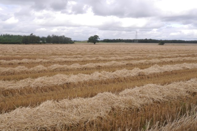 Harvested field, Green Valley