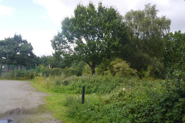 Rixton Claypits Nature Reserve