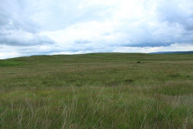 Grassland on the Hill of Ochiltree