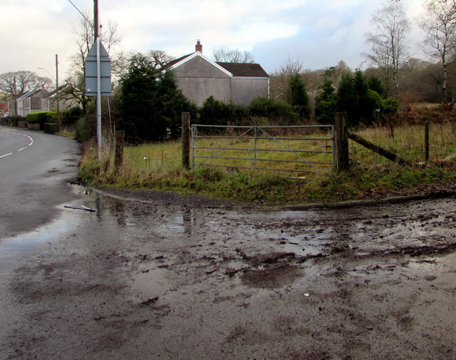 Muddy access to a field gate, Seven Sisters
