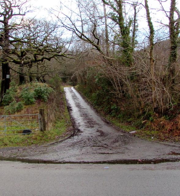 Farm access lane, Seven Sisters