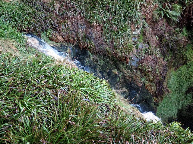 Lower waterfall at Lindhope Linn from above