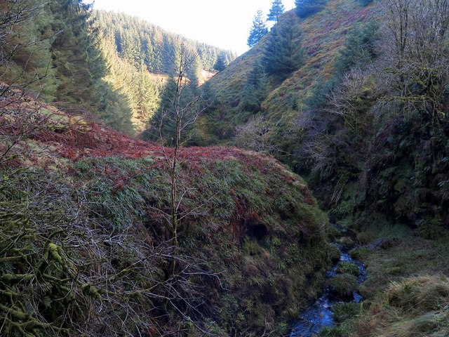Steep valley of Lindhope Burn below the waterfalls