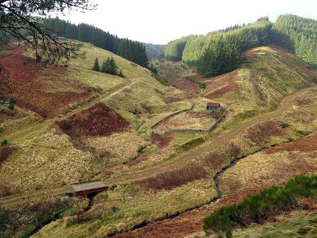 Whiteburnshank from slopes of Wether Hill