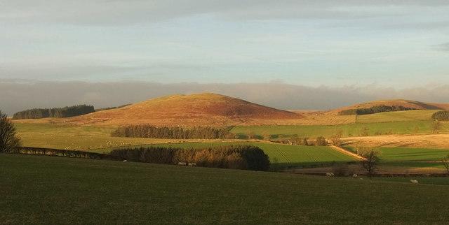 Gibb's Hill