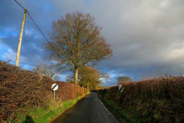 Churchinford : Royston Road