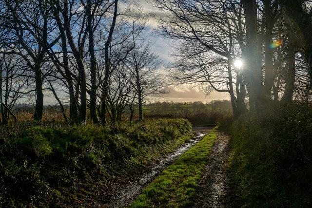 Churchinford : Track