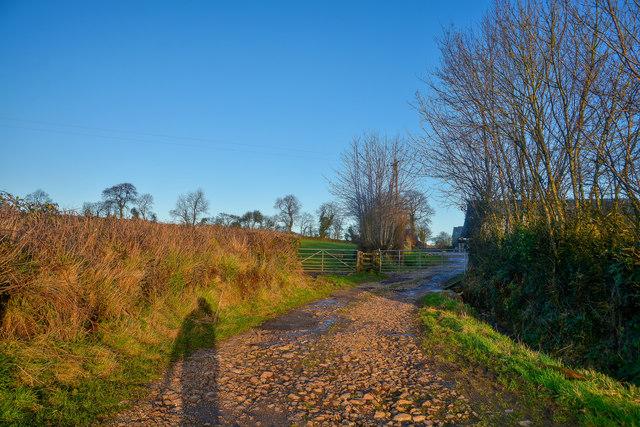 Otterford : Farm Track