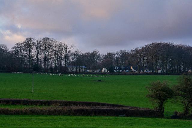 Churchstanton : Countryside Scenery