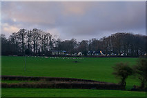 ST2114 : Churchstanton : Countryside Scenery by Lewis Clarke
