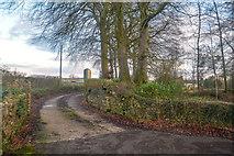 ST2113 : Churchstanton : Track by Lewis Clarke
