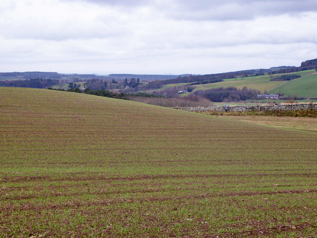 Arable field above Hemmie Knowe
