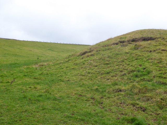 Strange humps in field south of Grubbit Plantation