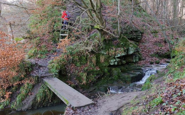 Plank bridge over Hunwick Gill