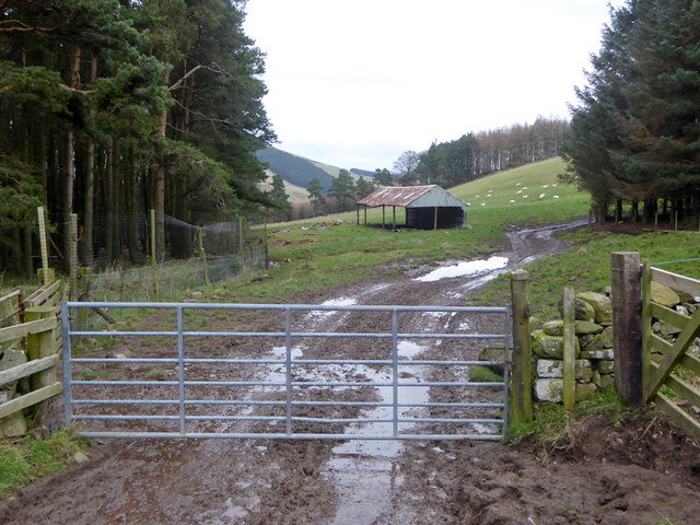 A muddy section on the track