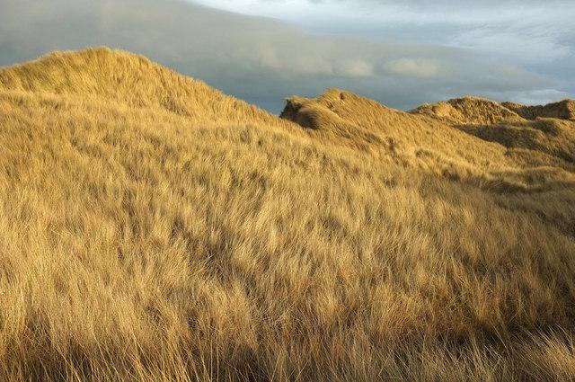 Dunes behind Sandham