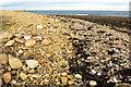 NU1441 : On Castle Point by Derek Harper