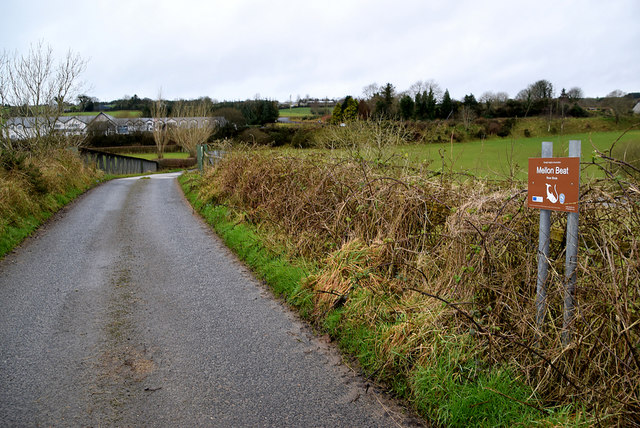 Road at Mellon Beat, Carrigans