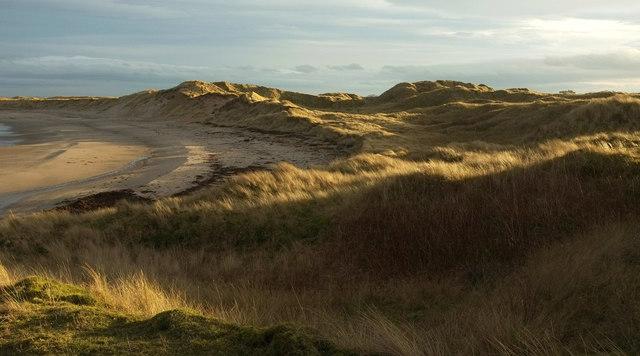 Dunes, Sandham