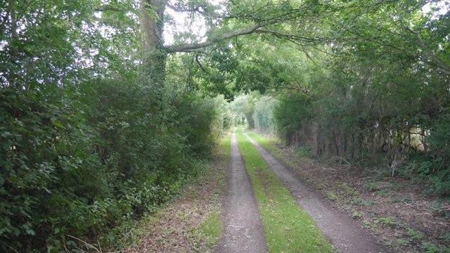 Green lane, Upper Holbach