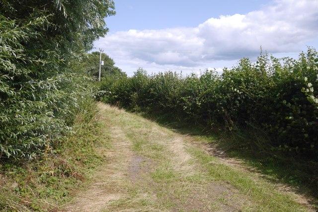 Green lane, Felton