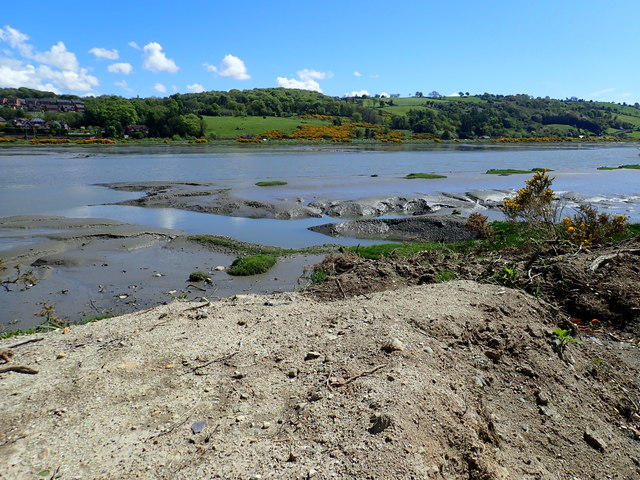 Mud flats in the Newry River