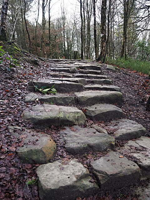 Stepped footpath