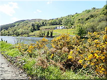 J1022 : House on rising ground above the Newry Canal by Eric Jones