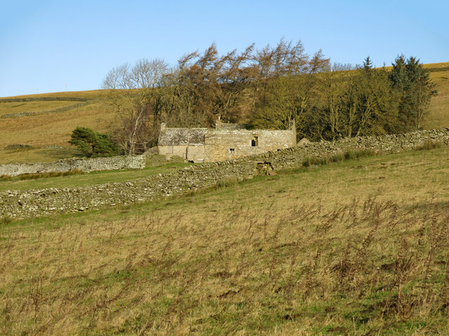 Rough pastures below Shepherd's House