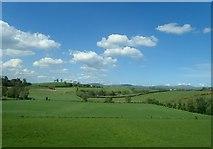 J2533 : Drumlins East of the hamlet of Cabra by Eric Jones