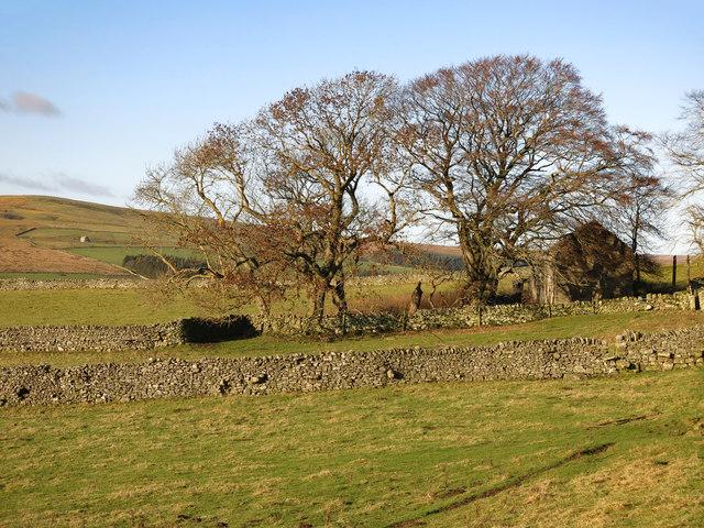 Rough pastures around Ashy Bank