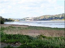 J0923 : Exposed mud flats in the Newry River estuary at Low Tide by Eric Jones