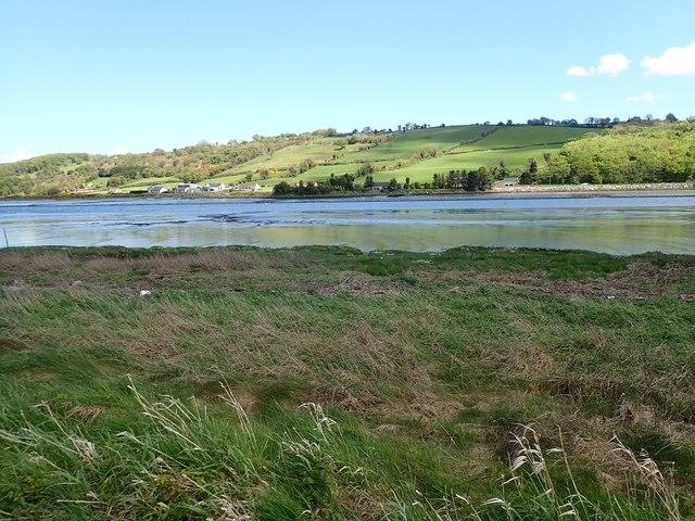Salt marsh on the riverine margin of the Middlebank