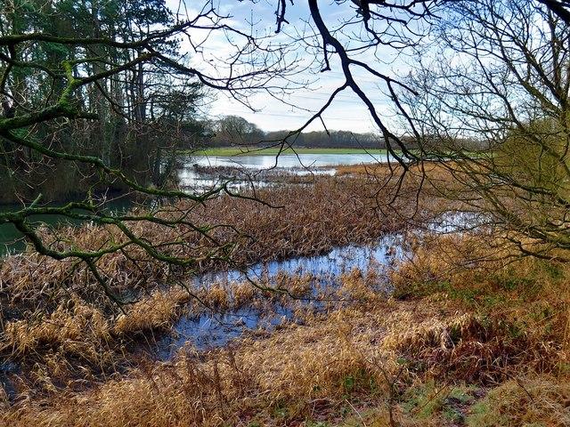 Floods from Reigh Burn near Throckley Pond