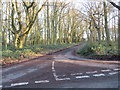 TL6004 : Road through woodland at Norton Heath, near Ongar by Malc McDonald