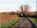 TL5804 : Norton Lane, near Ongar by Malc McDonald