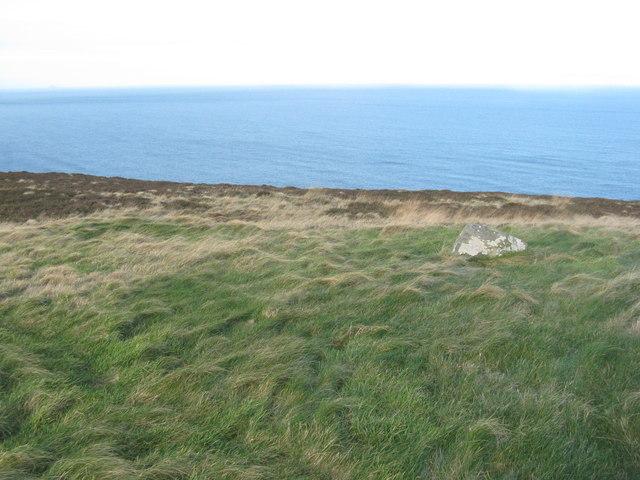 Rough grassland near Dowlaw